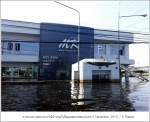 flood2011 11 0107