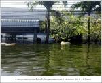 flood2011 11 0120