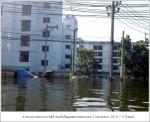 flood2011 11 01 27
