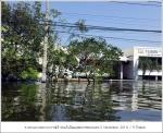 flood2011 11 01 41